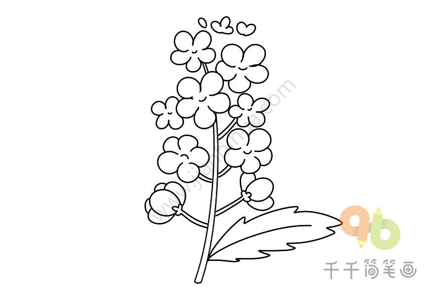 形态各异的花花草草树木简笔画
