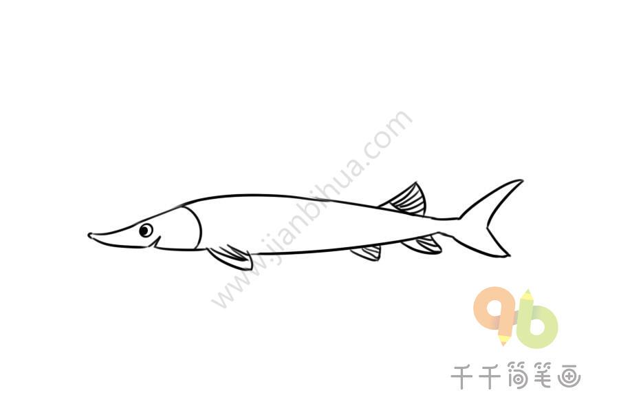 中华鲟简笔画_中华鲟简笔画步骤图_海洋动物