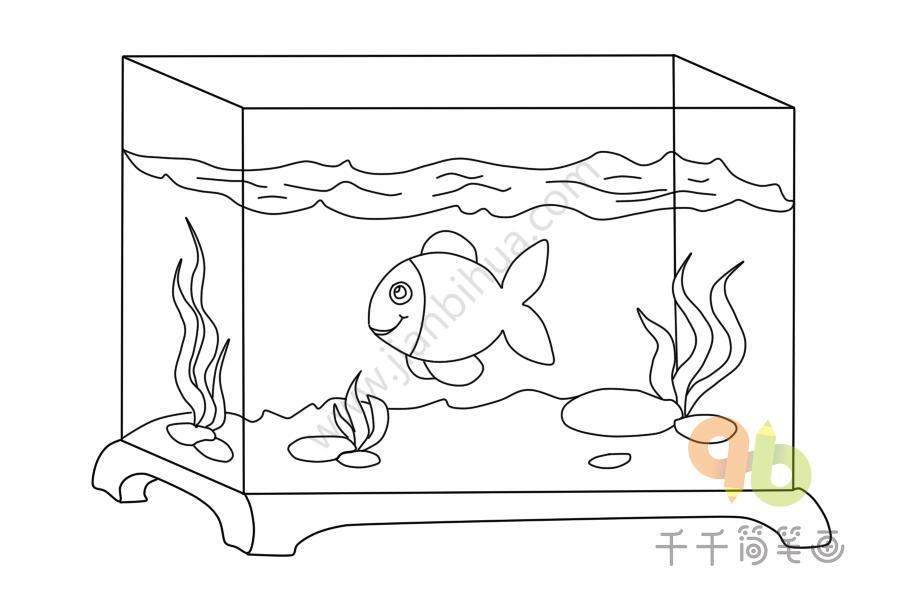 家居风水摆件大全_观赏鱼缸简笔画步骤图_生活用品
