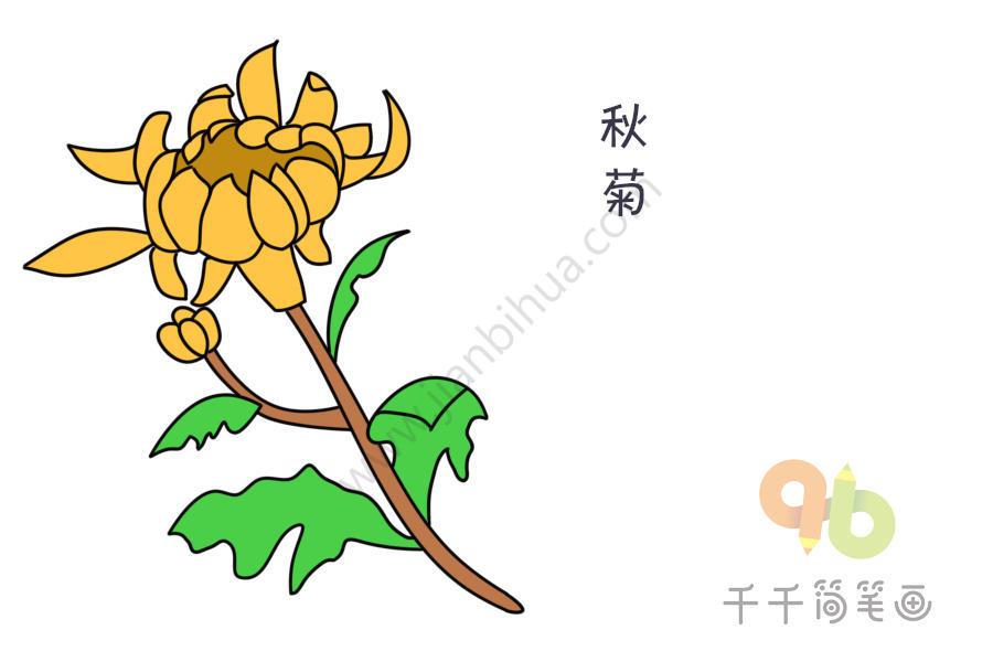 淡黄色的秋菊简笔画   粉红色秋藏红花简笔画   粉红色秋藏红花简笔画   五颜六色的花朵简笔画图片,花具有观赏价值的草本植物,是用来欣赏的植物的统称,喜阳且耐寒,具有繁殖功能的短枝,有许多种类,跟千千一起来画美丽的花吧~   淡黄色的秋菊简笔画