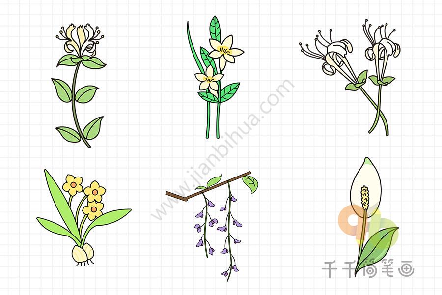 怎么画花朵简笔画   跟着步骤一步一步画出花朵   花朵简笔画亲子画   各种美丽的花朵简笔画大全,春天百花盛开,花园里一片美丽繁荣的景象.