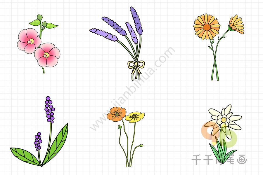 花朵简笔画亲子画   花朵怎么画简单   美丽的花朵简笔画大全   花朵简笔画轻松画   怎么画花朵简笔画   跟着步骤一步一步画出花朵