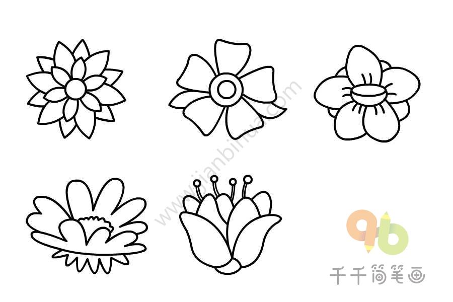 漂亮的鲜花简笔画