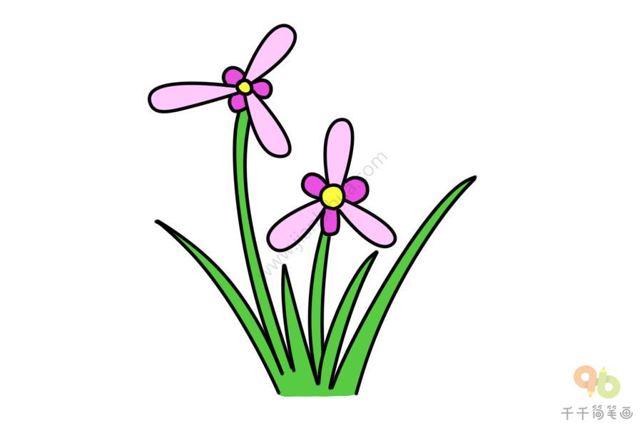 第五步:给兰花涂上粉色,叶子涂上绿色,兰花简笔画完成   第二步:画出兰花的花茎   第三步:在画好的第一只兰花右侧再画一只兰花   第四步:给兰花画一些叶子