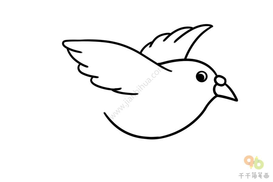 白鸽子简笔画