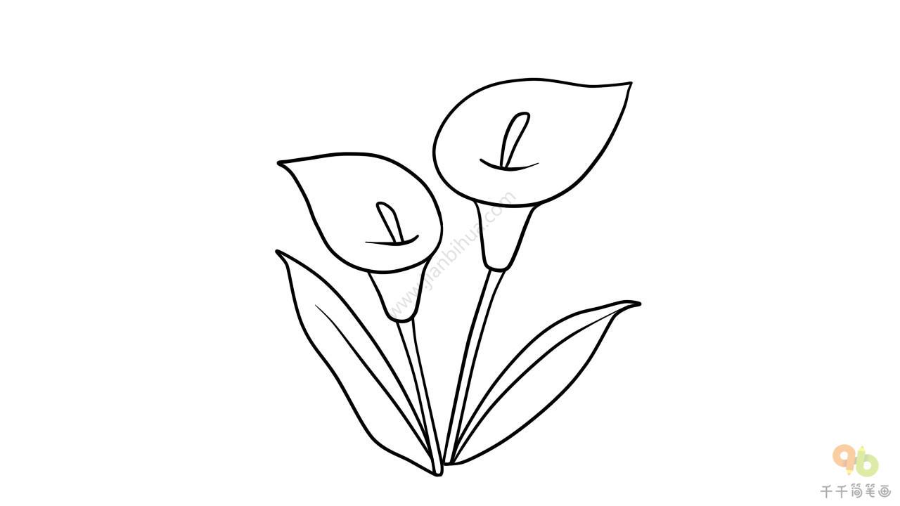 5种花朵简笔画图片大全