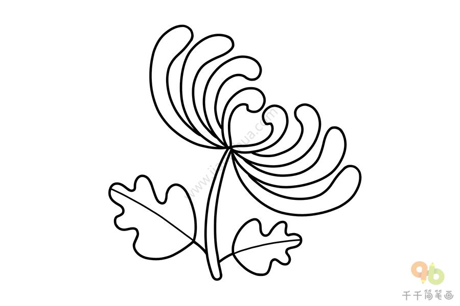 儿童简笔画 菊花画法   植物简笔画,花朵简笔画,菊花简笔画,花画法   菊花简笔画 一学就会   一步一步教你画菊花简笔画   简单易学的菊花简笔画教程