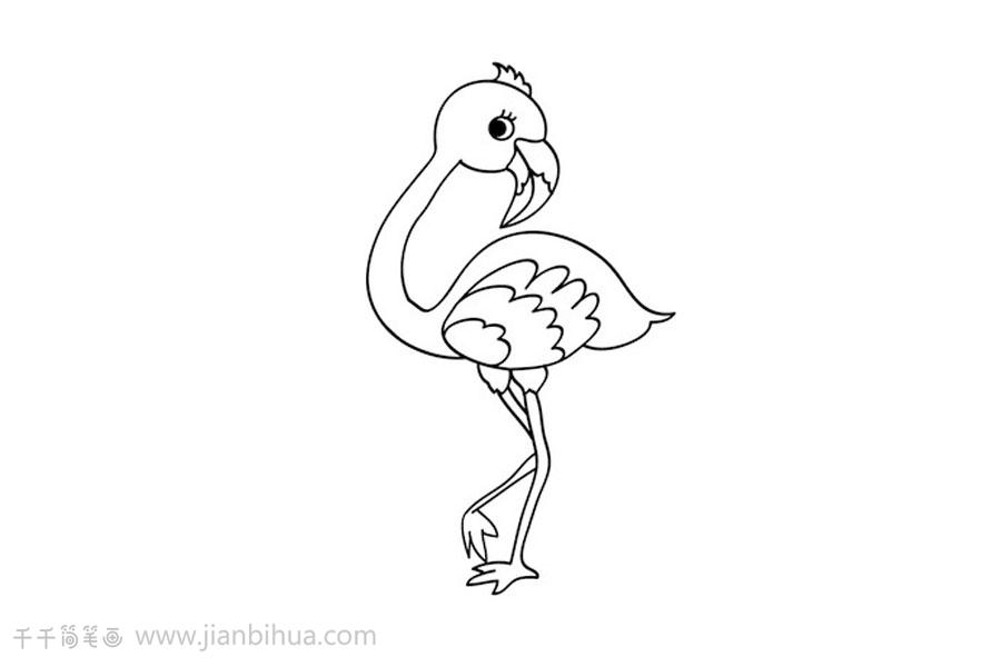 如何画火烈鸟简笔画   火烈鸟简笔画图片   火烈鸟简笔画,火烈鸟分布于地中海沿岸,东达印度西北部,南抵非洲,亦见于西印度群岛等地,因羽色鲜丽,被人饲为观赏鸟.
