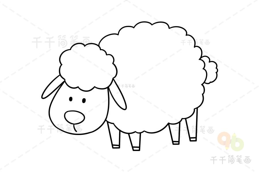 可爱小绵羊画法步骤图解 羊简笔画