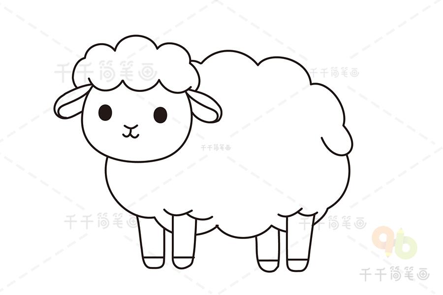 一步一步学画小绵羊简笔画 羊简笔画